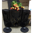Loa Bluetooth DJ-303