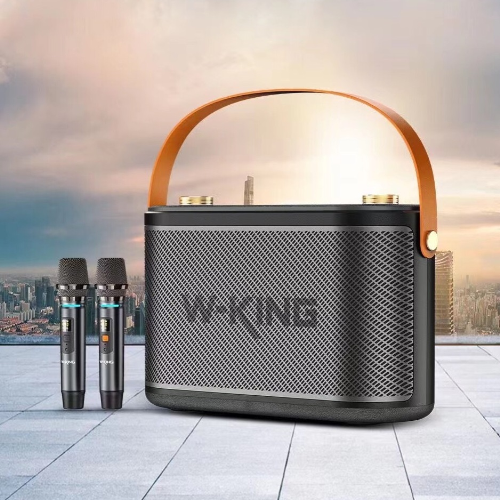 Loa Bluetooth Karaoke W-King T10 (2 Micro, 120W, Pin 22500 mAh)